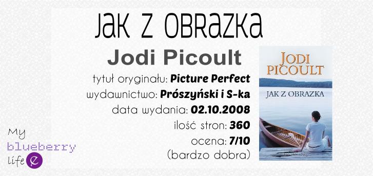 Jodi Picoult - Jak z obrazka
