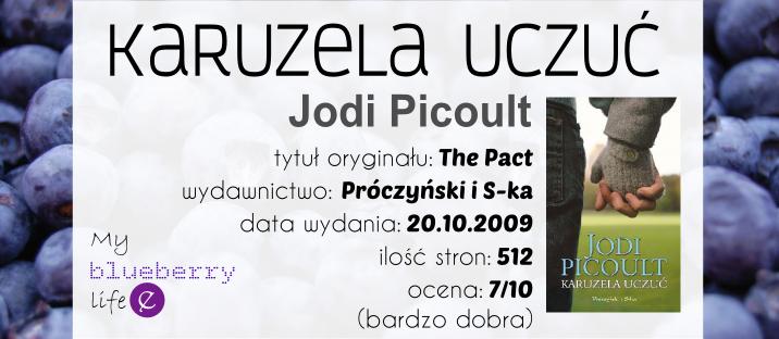 Jodi Picoult - Karuzela uczuć