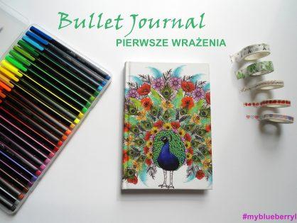 Bullet Journal - kilka słów po 3 miesiącach używania #MyBlueberryLife