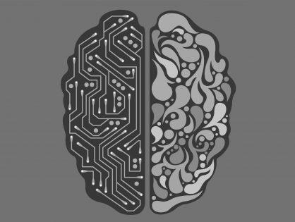 """KotBorysCzyta: David Eagleman """"Mózg. Opowieść o nas"""""""