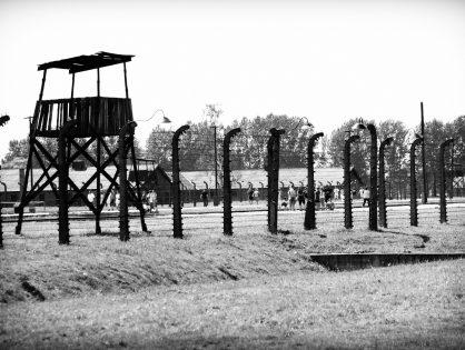 """Lily Graham """"Dziecko z Auschwitz"""""""