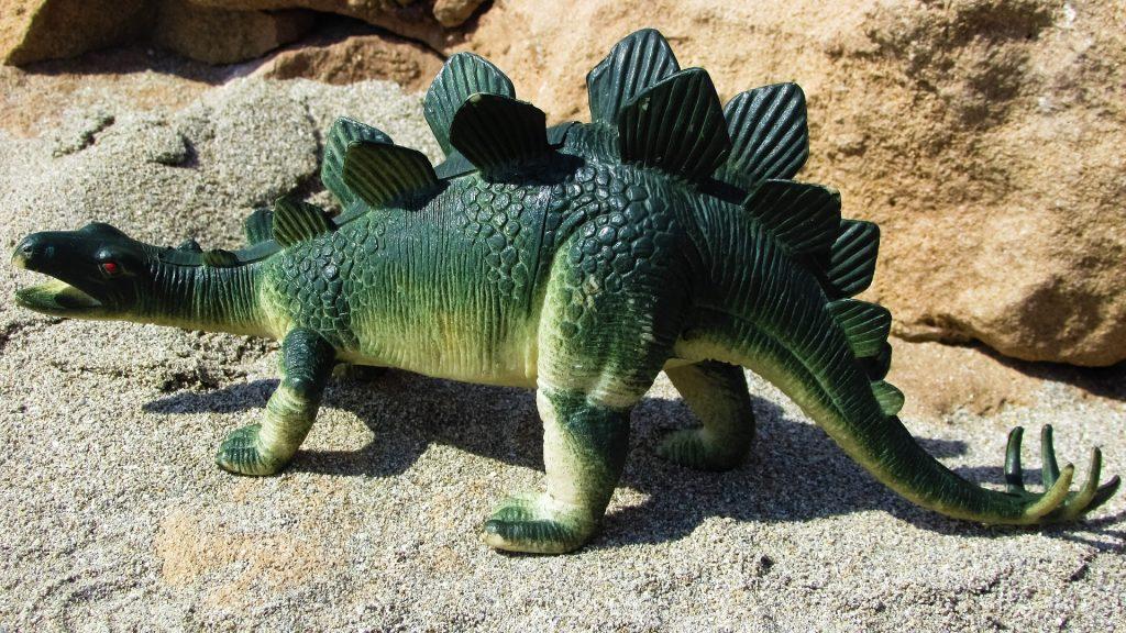 małego stegozaura